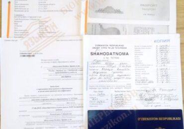 Перевод документов для гражданства